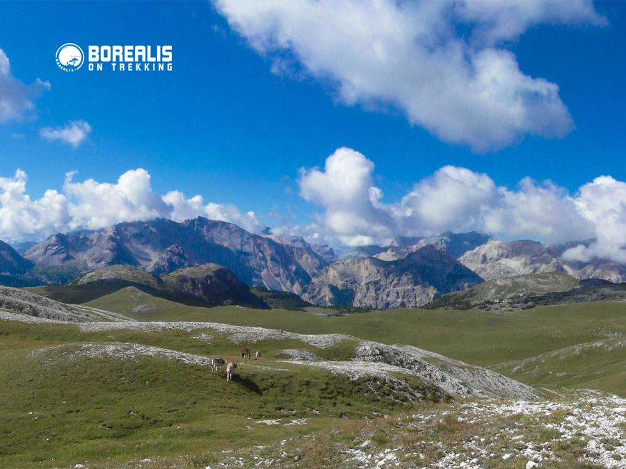 Alpes Sennes Dolomites Borealis